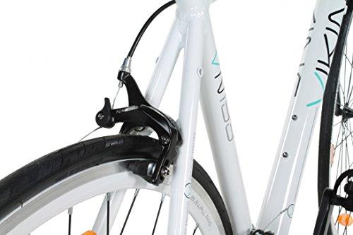 28-Fitnessbike-Viking-Palermo-3-Rahmengren-Carbongabel-0-4