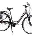 28-Zoll-Alu-Damen-Fahrrad-City-Trekking-Bike-Shimano-Nexus-7-Gang-Nabenschaltung-grau-0