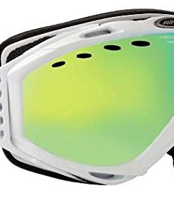 ALPINA-Cybric-HM-SkibrilleSnowboardbrille-Modell-2014-0