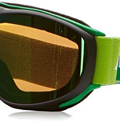 ALPINA-Erwachsene-Skibrille-Challenge-20-MM-Black-Matt-Green-One-Size-7095834-0
