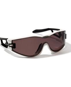 ALPINA-Swing-S42-DLQ-Sportbrille-Modell-2014-0