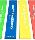 SmartSportStudio--4er-Set-Premium-Therabnder-Fitnessbnder-Widerstandsbnder-Gymnastikbnder-Trainingsbnder-Loop-Resistance-Bands--fr-Beine-und-Arme--mit-Transportbeutel-und-deutscher-bungsanleitung--aus-0