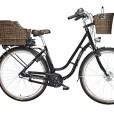 FISCHER-E-Bike-RETRO-ER-1704-Vorderradmotor-36-V317-Wh-und-LED-Display-0