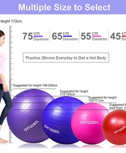 Arteesol-Gymnastikball-Balance-Ball-45cm55cm65cm75cm-Yoga-Ball-mit-Pumpe-Anti-Burst-Fitness-Balance-Ball-fr-Core-Strength-0-1