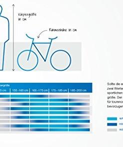 FISCHER-E-Bike-City-ECU-1401-Anthrazit-0-4